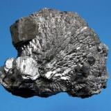 Arsenopyrite Chifeng, Neimenggu, Inner Mongolia, China 7.5 x 6.0 cm (Author: Don Lum)