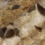 Dolomita (variedad Teruelita)<br />Vilanova de la Sal, Comarca Noguera, Lleida / Lérida, Catalunya, España<br />65 x 40 x 45 mm, cristal mayor 7 x 3 mm<br /> (Autor: Carles)