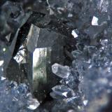 Tennantite San Jose mine, San Jose del Progreso, Oaxaca, Mexico Crystals 1 cm (Author: Cesar M. Salvan)