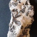 Óxidos de manganeso, dendritas sobre calcita Marruecos 7x 3,5 x 3 cm. No puedo decir la localidad, porque fue un regalo de viaje, comprado vete a saber donde. (Autor: Felipe Abolafia)