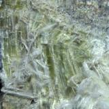 Anfíbol (variedad crisotilo) Sierra Nevada, Granada, Andalucía, España 10 x 9 x 5 cm. Detalle vista posterior (Autor: Felipe Abolafia)