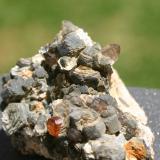 Spessartina (Espesartina) (Grupo Granate) sobre Mica y Cuarzo Mina Wushan, Tungbei, Yunxiaoco, Prefectura de Zhangzhou, Fujian, China. Pieza 42mm - 34mm - 27mm / cristal de granate 4mm - 4mm - 3mm Detalle de un cristal de cuarzo. Foto a la luz del dia. (Autor: Pedro Naranjo)