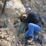 Neil Prenn intent on digging quartz in a pocket. (Author: Tony L. Potucek)
