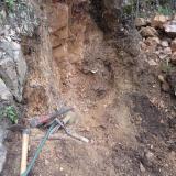 Geoda Montseny - 30 abril 2014 005.jpg (Author: Joan Martinez Bruguera)