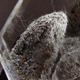 Gypsum Naica. Mun de Saucillo, Chihuahua, Mexico. FOV 15 x 15 mm approx. (Author: nurbo)
