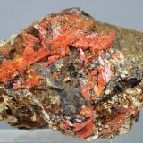 Crocoita<br />Mina Red Lead, Dundas, Distrito Zeehan, Consejo Costa Oeste, Tasmania, Australia<br />65x45x45 mm<br /> (Autor: Juan Espino)