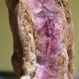 Calcita (variedad cobaltifera)<br />Mina Solita, Peramea, Baix Pallars, Comarca Pallars Sobirà, Lleida/Lérida, Catalunya, España<br />9''7 x 2''7 cm<br /> (Autor: phrancko)