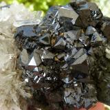 Esfalerita<br />Mina Krushev dol, Zona minera Madan, Montes Rhodope, Smolyan Oblast, Bulgaria<br />8x5 cm<br /> (Autor: nerofis2)