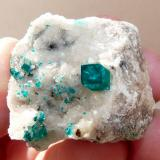 Dioptase on calcite. Tsumeb, Namibia 47 x 36 x 31 mm Same as above. (Author: Pierre Joubert)