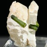 Elbaite on quartz<br />Jequitinhonha, Minas Gerais, Brazil<br />Specimen height 5 cm, largest tourmalines 2 cm<br /> (Author: Tobi)