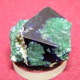 Azurite/Malachite<br />Tsumeb Mine, Tsumeb, Otjikoto Region, Namibia<br />30x30mm<br /> (Author: Heimo Hellwig)