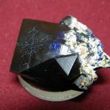 Azurite<br />Tsumeb Mine, Tsumeb, Otjikoto Region, Namibia<br />30x26mm<br /> (Author: Heimo Hellwig)