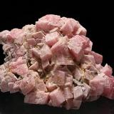 Rhodochrosite<br />Cavnic Mine, Cavnic mining area, Cavnic, Maramures, Romania<br />H:5.2cm xW:3.6cm xD:2.5cm; Largest Crystal: 1.1cm<br /> (Author: Adrian Pripoae)