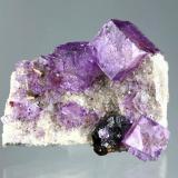 Fluorite, sphalerite<br />Elmwood Mine, Carthage, Central Tennessee Ba-F-Pb-Zn District, Smith County, Tennessee, USA<br />Specimen size 7 cm, largest crystal 2 cm<br /> (Author: Tobi)