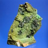 Atacamite<br />Copiapó Province, Atacama Region, Chile<br />9.5 x 6.7 cm<br /> (Author: Don Lum)