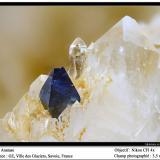 Anatase<br />Ville des Glaciers, Savoie, Auvergne-Rhône-Alpes, France<br />fov 3.5 mm<br /> (Author: ploum)