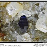 Anatase<br />Ville des Glaciers, Savoie, Auvergne-Rhône-Alpes, France<br />fov 6 mm<br /> (Author: ploum)