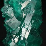 Beryl (var. emerald)<br />Coscuez mining district, Municipio San Pablo de Borbur, Western Emerald Belt, Boyacá Department, Colombia<br />40x26x15mm<br /> (Author: Fiebre Verde)