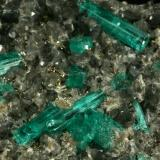 Beryl (variety emerald), Calcite, Pyrite, Albite<br />Muzo mining district, Western Emerald Belt, Boyacá Department, Colombia<br />Detail - FOV=6cm<br /> (Author: Fiebre Verde)