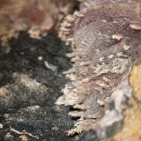 Calcita (variedad cobaltífera)<br />Mina Solita, Peramea, Baix Pallars, Comarca Pallars Sobirà, Lleida/Lérida, Catalunya, España<br />2''7 x 2 cm encuadre de la foto.<br /> (Autor: phrancko)