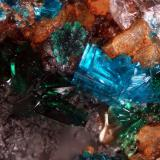 Sampleite and Atacamite<br />Santa Catalina Mine, Caracoles, Sierra Gorda District, Tocopilla Province, Antofagasta Region, Chile<br />FOV of 2,27 mm<br /> (Author: ofarcis)