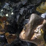 Calcopirita y Esfalerita<br />Minas da Panasqueira, Aldeia de São Francisco de Assis, Covilhã, Castelo Branco, Cova da Beira, Centro, Portugal<br />Medidas pieza: 5,7x5x4,3 cm<br /> (Autor: Sergio Pequeño)