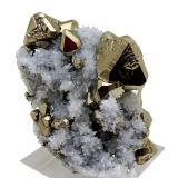 Pyrite, quartz<br />Huanzala Mine, Huallanca District, Dos de Mayo Province, Huánuco Department, Peru<br />60 mm x 41 mm<br /> (Author: Carles Millan)