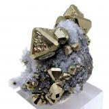 Pyrite, quartz<br />Huanzala Mine, Huallanca District, Dos de Mayo Province, Huánuco Department, Peru<br />60 mm x 41 mm<br /> (Author: Carles Millan)
