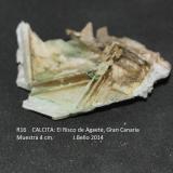 Calcita<br />Barranco de El Risco, Agaete, Gran Canaria, Provincia de Las Palmas, Canarias, España<br />4 cm<br /> (Autor: Jose Bello)