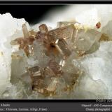 Allanite-(Ce) on Dolomite<br />Trimouns Mine, Luzenac, Ariège, Occitanie, France<br />fov 3.5 mm<br /> (Author: ploum)
