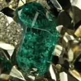 Beryl (variety emerald) and Pyrite<br />Chivor mining district, El Acuario Mine, Municipio Chivor, Eastern Emerald Belt, Boyacá Department, Colombia<br />Detail - xl length=6mm<br /> (Author: Fiebre Verde)