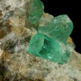 Beryl (variety emerald), Calcite<br />Chivor mining district, Municipio Chivor, Eastern Emerald Belt, Boyacá Department, Colombia<br />Crystals are about 1cm long<br /> (Author: Fiebre Verde)