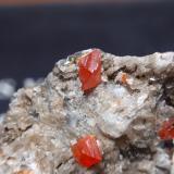 WulfenitaMina Red Cloud, Montes Trigo, Distrito Silver, Condado La Paz  , Arizona, USA25x25 mm (Autor: Ignacio)