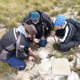 3 students busy removing a large pocket of exciting quartz. (Author: Pierre Joubert)