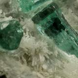 Beryl (variety emerald), Calcite, Aragonite<br />Chivor mining district, Municipio Chivor, Eastern Emerald Belt, Boyacá Department, Colombia<br />Detail FOV=8mm<br /> (Author: Fiebre Verde)