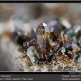 Vesuvianite and ClinochloreFelskinn, Glaciar Fee, Saas Fee, Valle Saas, Zermatt - Saas Fee, Wallis (Valais), Suizafov 4,5 mm (Author: ploum)