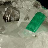 Beryl (variety emerald), Calcite<br />Coscuez mining district, Municipio San Pablo de Borbur, Western Emerald Belt, Boyacá Department, Colombia<br />54x34x50mm, both xls=13mm<br /> (Author: Fiebre Verde)