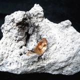 TopazCordillera Thomas, Condado Juab, Utah, USASpecimen size 8 cm, topaz crystal 1,3 cm (Author: Tobi)