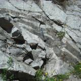 Lamprofido en granodiorita.JPG (Autor: Miguel Calvo)