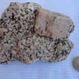 Granodiorita (Muestra problema-3) Cala Estreta, Palamós, Girona Aquí el megacristal tiene unos 2 x 4 cm y es de color rosado, a diferencia del feldespato potásico anterior que es blanco. En este caso no tengo una foto de la zona de extracción. Creo que también se trata de granodiorita con megacristales de feldespato-K, que supongo que será Ortoclasa. En la zona está descritos: el granito biotítico, la granodiortita con megacristales de felespato-K, leuco granitos y diversas rocas filonianas. En este caso la muestra no procedía de un filón, si no de la masa principal. (Autor: germanvet)