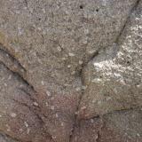 Granodiorita con fenocristales de feldespato potásico (F- K)- Zona  de la muestra problema  (muestra-2)   Cala La Fosca, Palamós, Girona De repente el color de la granodiorita cambia a rojo (los megacristales continuan siendo blancos o predominantemente blancos). Estas manchas rojizas se hallan presentes a lo largo de toda la zona explorada en mayor o menor frecuencia. (Autor: germanvet)