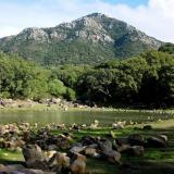 _La formación Areniscas del Aljibe, perteneciente a la Serie del Aljibe del Complejo Tecto-Sedimentario del Campo de Gibraltar, está compuesta de una alternancia de bancos de arenisca y capas mas finas de arcilla, con una potencia total de hasta 1.500 m. Ocupa la mayor parte de la mitad Sur de la provincia de Cádiz. Está muy afectada tectónicamente y estructurada en una serie de cabalgamientos y escamas que se han deslizado por encima del resto de formaciones de la zona, configurando los relieves mas altos de la provincia.  En primer plano, la Laguna del Picacho en época seca. El Picacho, al fondo, y el Aljibe (que da nombre a esa formación de areniscas), superan los 1.000 m de altura y son las cimas mas altas de Cádiz. Los gruesos estratos de arenisca resisten bien la erosión. Alcalá de los Gazules, Cádiz. (Autor: Josele)
