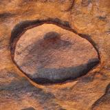 _En los bancos de arenisca hay frecuentes filoncillos ricos en óxidos de hierro rellenando grietas y algunas estructuras curiosas, como esta cáscara ferruginosa. Aunque los óxidos tienen menor dureza que el cuarzo de la arenisca, estas capas están mas cementadas y resisten mejor la intemperie, por lo que la erosión diferencial provoca un relieve positivo. (Autor: Josele)