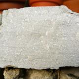 Caliza con muchos foraminíferos, de color gris claro en diferentes tonos y textura medio gruesa. Presenta laminación paralela y estructuras de corriente en la base. Vista de una sección perpendicular a la estratificación. CdV: 20 cm (Autor: Josele)