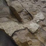 Caliza y toba. En el centro de la imagen, costra de caliza compactada por el calor de la toba presente en la zona superior La Isleta, Gran Canaria, España Ancho de imagen 1,5 metros (Autor: María Jesús M.)