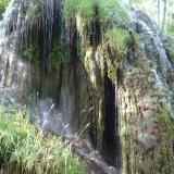 Caliza. A medida que cesa el flujo de agua, el carbonato se deposita sobre la vegetación, dando masas calizas como las de la parte inferior derecha. Monasterio de Piedra. Nuévalos. Zaragoza (Autor: María Jesús M.)