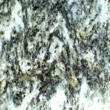 Gneis (detalle del anterior) Punta de la Mona (La Herradura, Granada, España) 20X Se aprecia la textura cristalina de grano fino y una estructura plegada (visible sobre todo en el borde del canto aplanado). (Autor: prcantos)