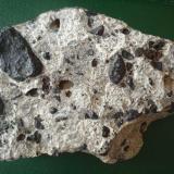 Conglomerado cementado por arenisca caliza, con cantos rodados de rocas volcánicas variadas y restos fósiles Famara, Lanzarote Ancho de imagen 12 cm. (Autor: María Jesús M.)