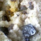 Perovskita (detalle de la misma roca) Cantera Dellen (Niedermendig, Mendig, complejo volcánico del Lago Laach, Eifel, Alemania) 50X Perovskita de hábito octaédrico y color gris acero.  Se aprecian también otros cristales de formas más imperfectas.  Todo en la parte superior. (Autor: prcantos)