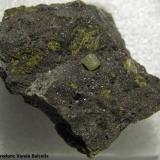 Kimberlita con un pequeño diamante (pegado) República Sudafricana Pieza 3,5 x 3 cm. (cristal 2 mm.) (Autor: Frederic Varela)